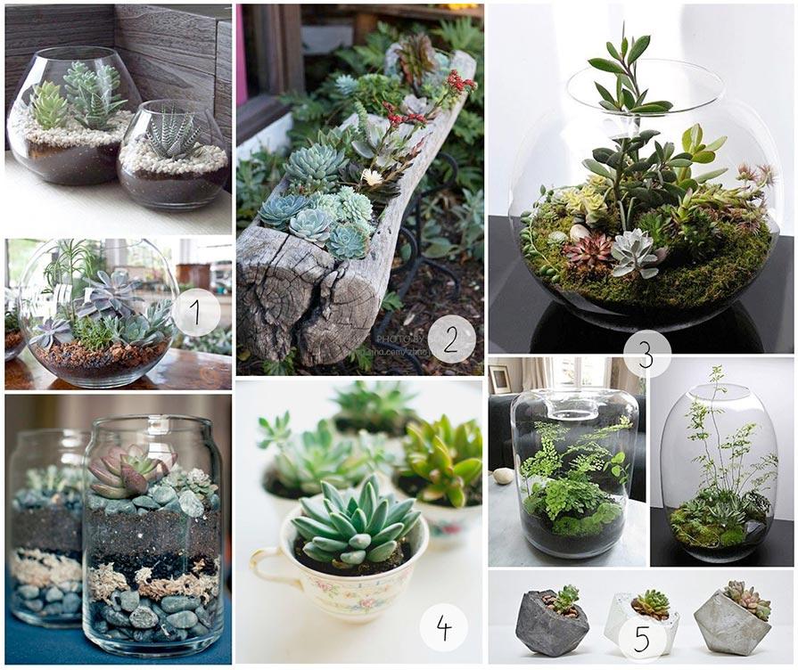 Ein bisschen Inspiration für eurer eigenes Terrarium, die ich auf Pinterest gefunden habe.