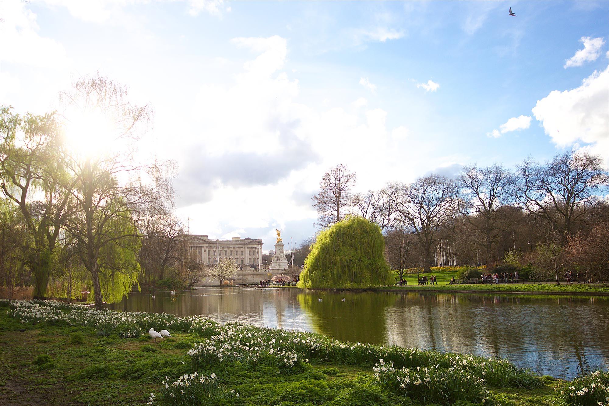 Buckingham Palace, aufgenommen vom St. James's Park aus